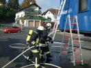 BSA FireDragon 2008_29