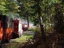 HVB Waldbrandübung 2009_10