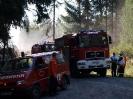 HVB Waldbrandübung 2009_21