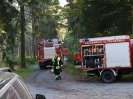 HVB Waldbrandübung 2009_25