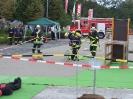 Bezirksentscheid 2011_24
